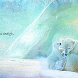 Talulla Bear's Bedtime Book p4-5
