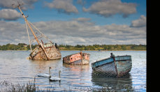 Old Wrecks and Swans Pin Mill Suffolk