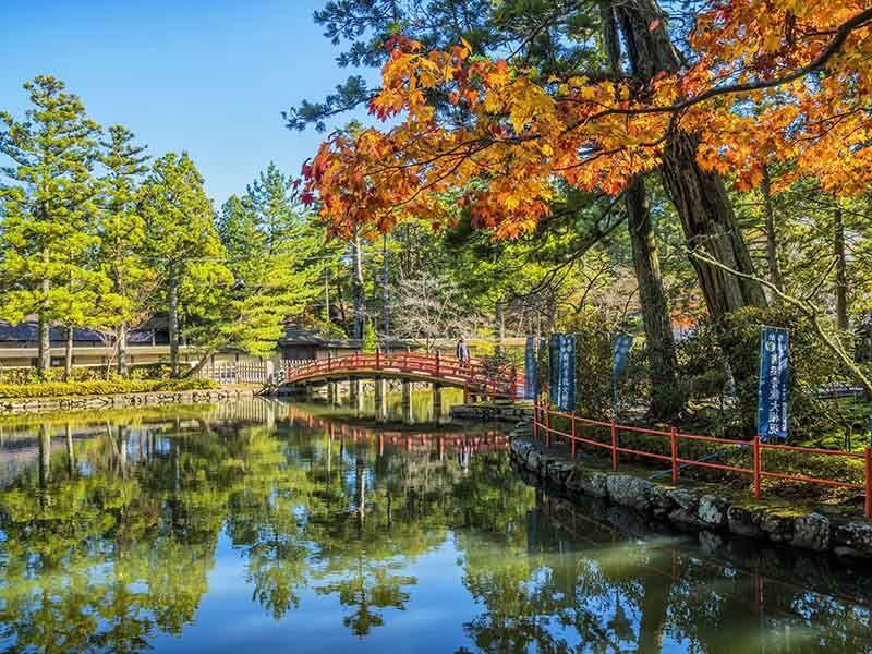 Autumn Mt Koya