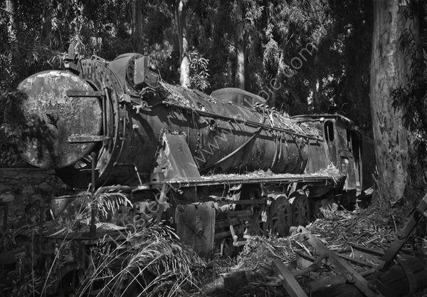 Engine Graveyard 1