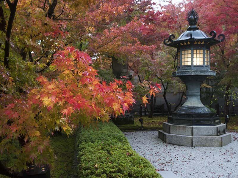 Garden Kyoto