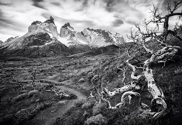 Harsh Landscape Chile