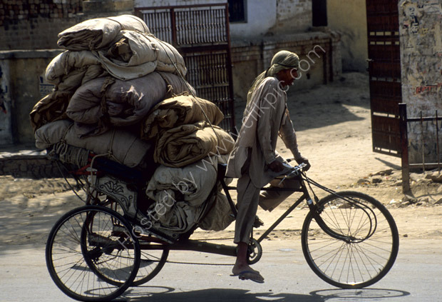 One Man Transport Co.