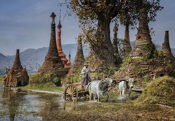 Rural Life Inles Lake Burma