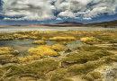 Salt Lakes Altiplano Chile
