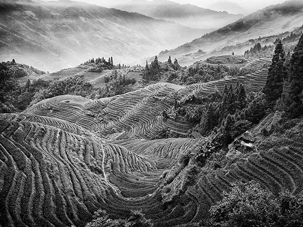 Terraced Landscape China mono