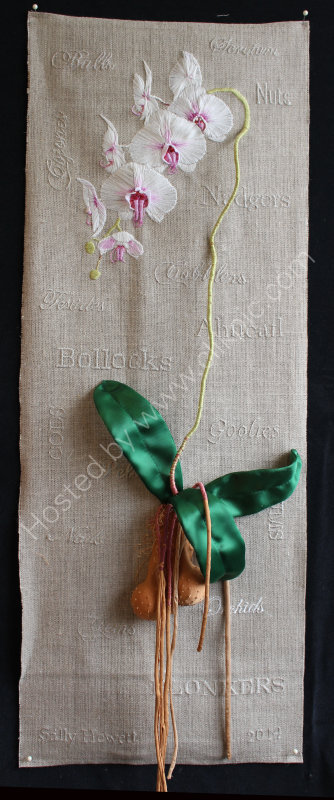 Orchid Sampler, 2015