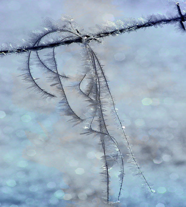 Ice on the wire