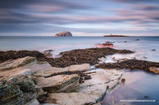 Bass Rock from Seacliff Series VI