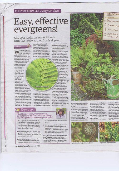 Garden News 1