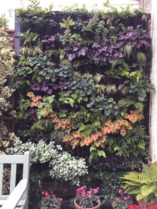 Helen Williams Garden Design