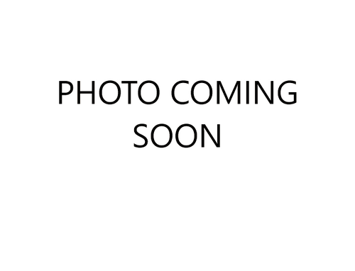 Jeffersonia diphylla 9cm £4.95