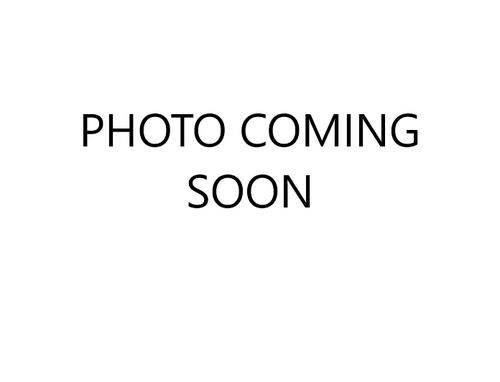 Arisaema tortuosum Bulb £6.95