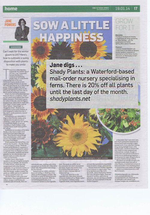 Our January sale was noted in the Sunday Times last year!