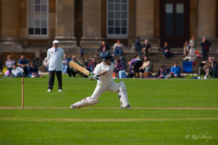 Batting for Blenheim