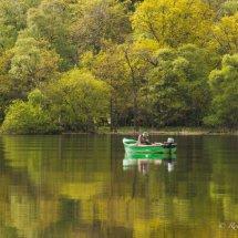 Reflection on fishing