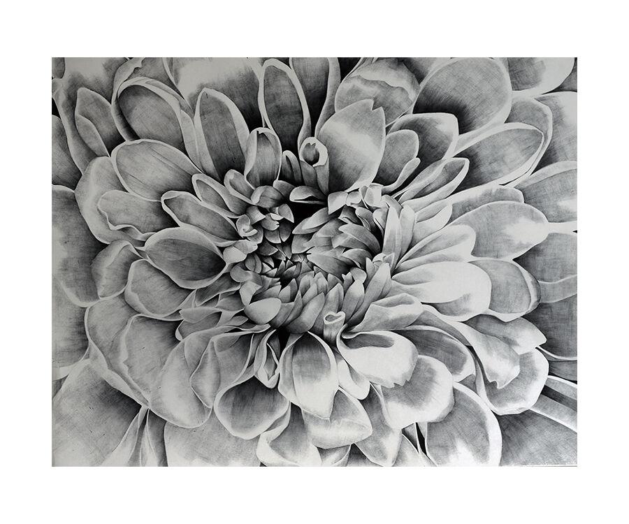 Monochrome in Bloom
