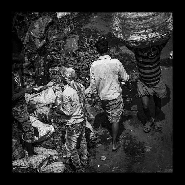 Kolkata-11