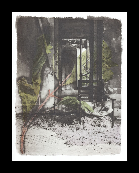 Platine / palladium print hand-coloured