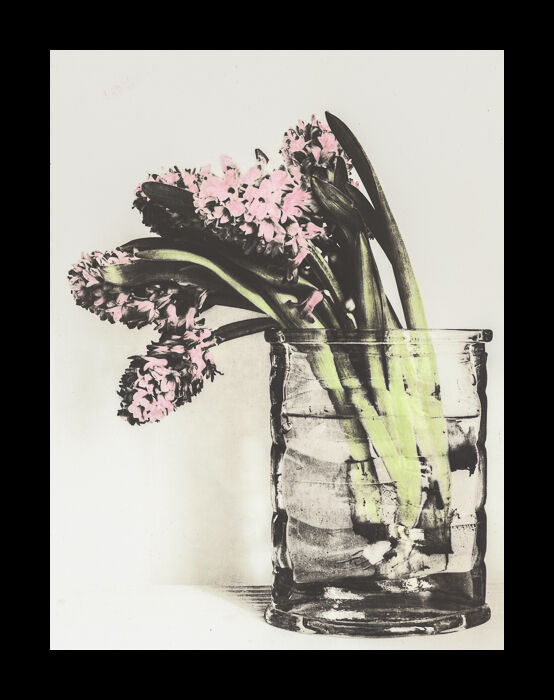 Hand-coloured lith print