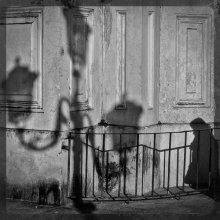 Venice Noir-7