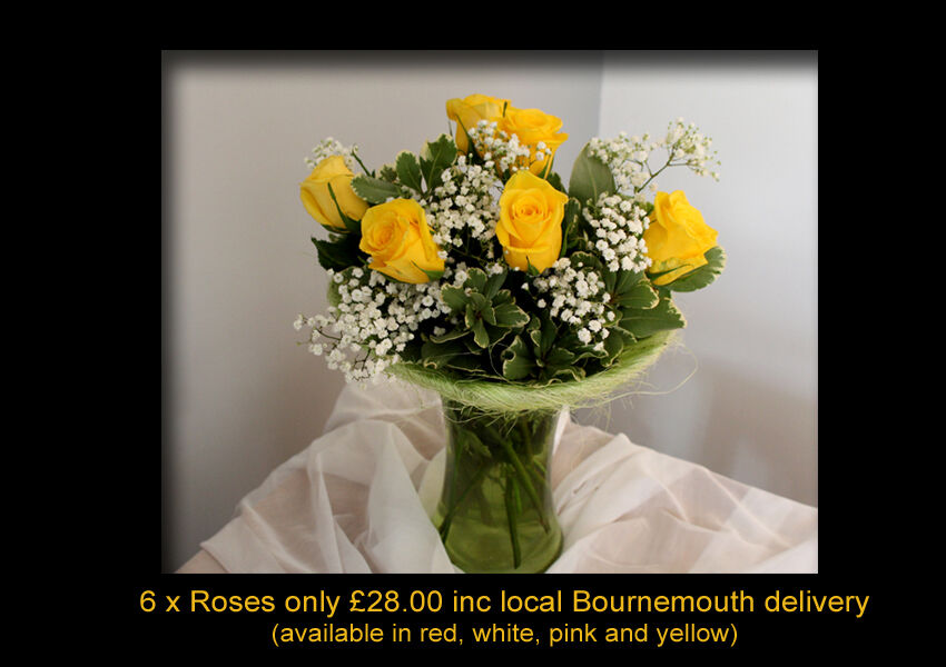 6 ROSES (choice of colours) £28