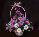 Basket Flowers: £35.00
