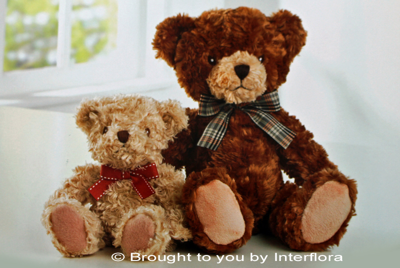 "Add a Teddy - ""Bramble Bear"": £9.99"