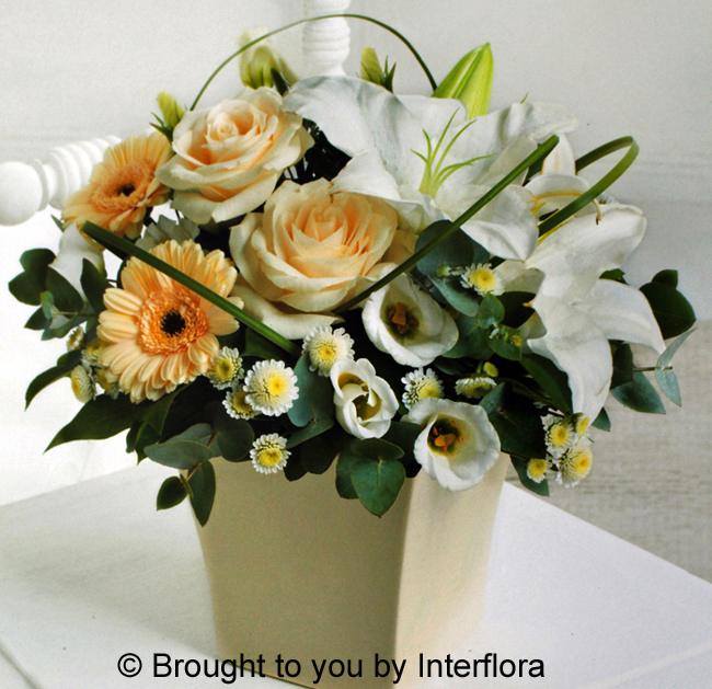 Cream Exquisite Arrangement: £35.00
