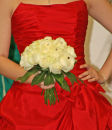Cream Rose-Diamonte Handtied