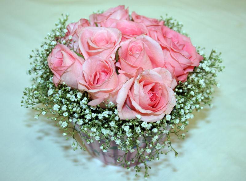 Cupcake Pink Rose & Gypsophilia