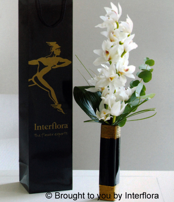 Elegant White Orchid in Vase: £29.00