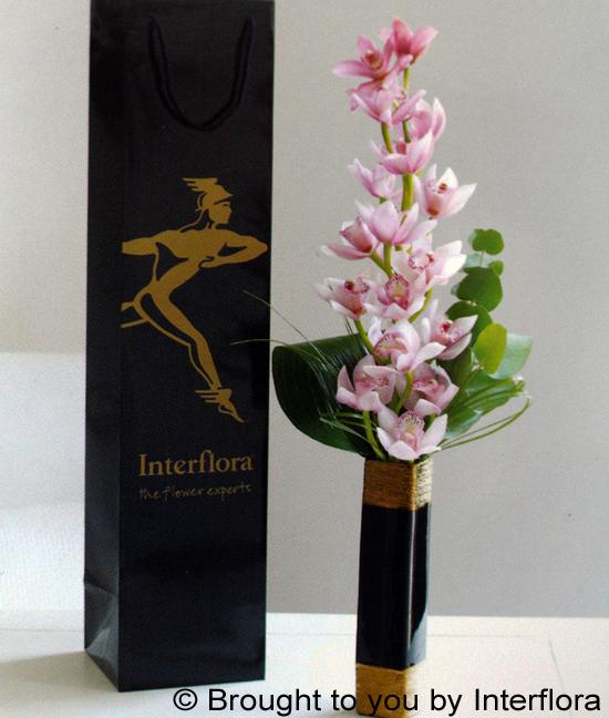 Elegant Pink Orchid in Vase: £29.00