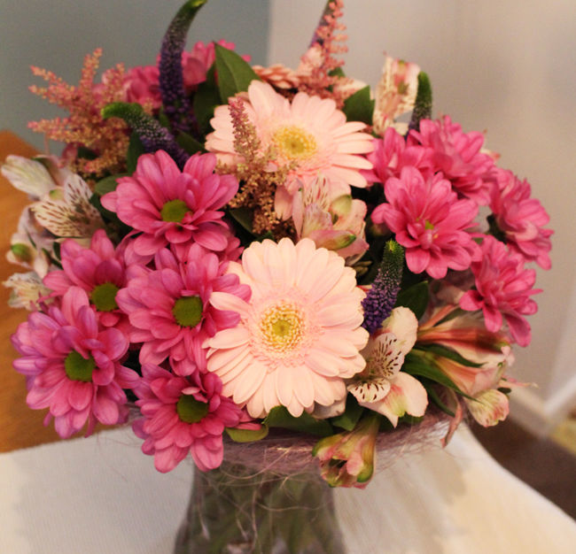 SPECIAL OFFER - Germinis in Vase £25