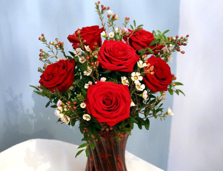 6 Red Roses in Vase: £35