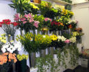 Inside the shop at 10 Sea Road fully stocked up with fresh flowers daily