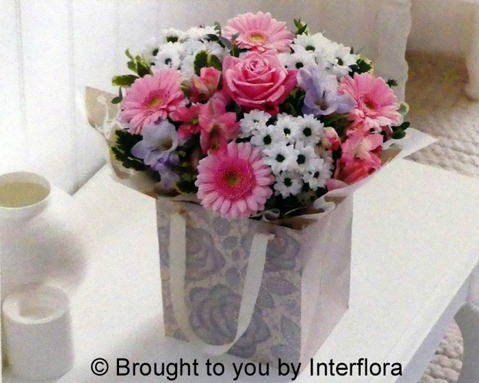 Pink Gift Bag: £33.00