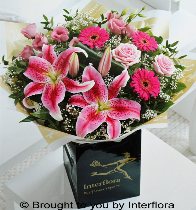 Pink Radiance Hand-Tied - LARGE: £45.00