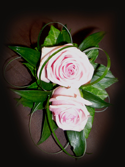 Pink Double Rose Corsage