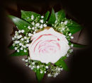 Single Pink Rose & Gypsophilia Corsage