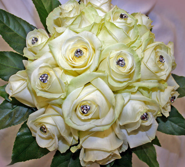 Cream Rose-Diamonte Handtied