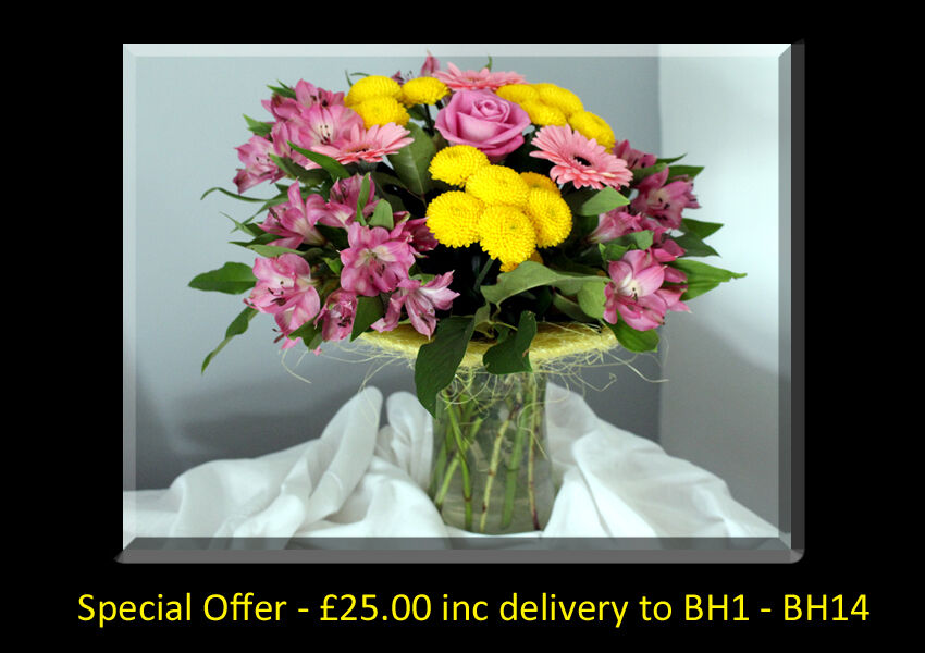 Special Offer - £25 inc Delivery