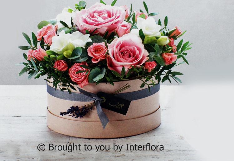 Sweet Adoration Hatbox £34