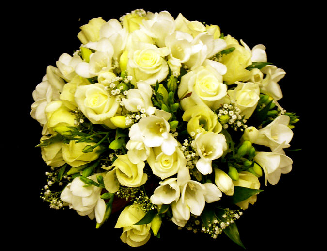 White Rose & Freesia Posy