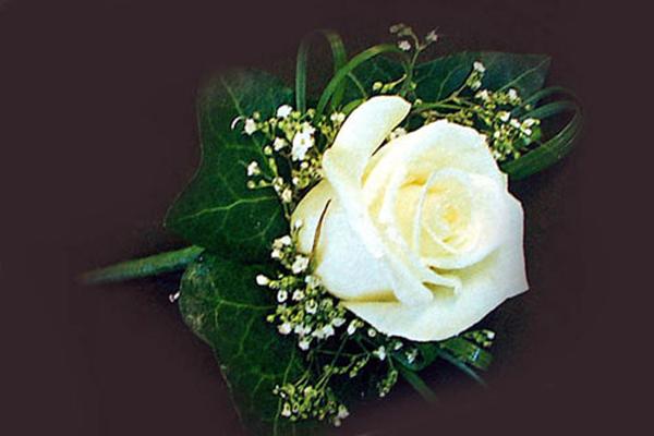 Single White Rose Buttonhole with Gypsophilia
