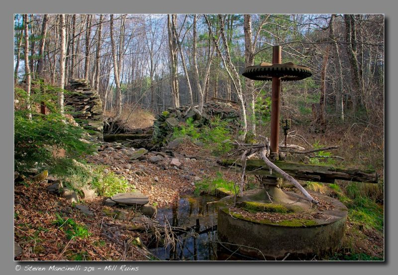 Mill Ruins, Little Beaverkill