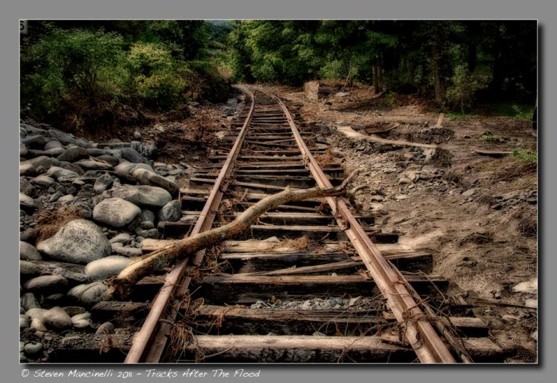 Tracks After The Flood