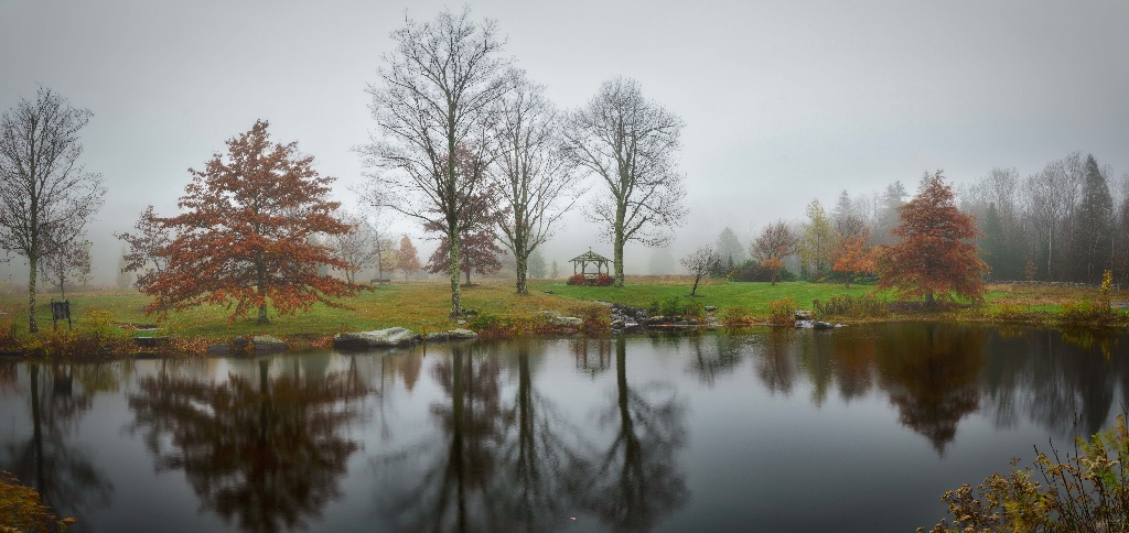 Misty Afternoon, Mountaintop Arboretum