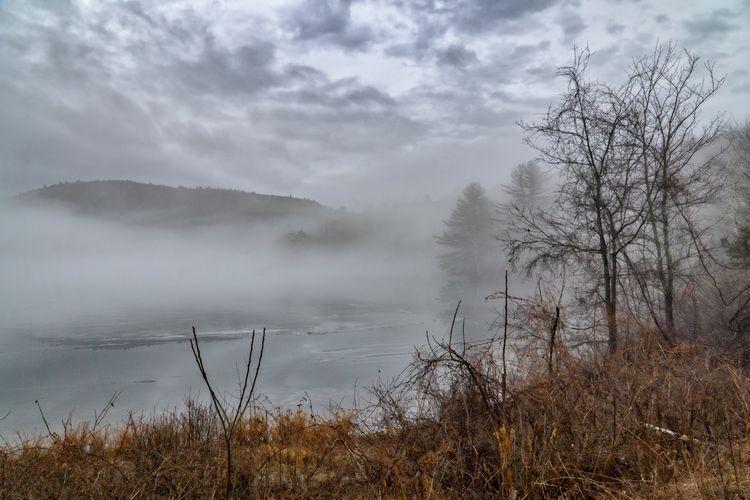Christmas Fog On Cooper Lake, panorama