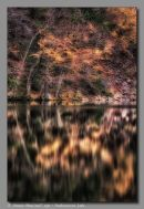 Light On Peekamoose Lake
